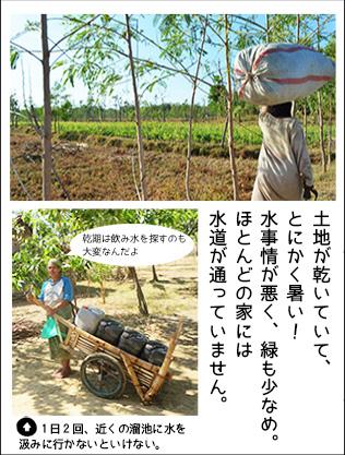土地が乾いていて、 とにかく暑い! 水事情が悪く、緑も少なめ。 ほとんどの家には 水道が通っていません。